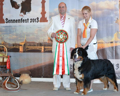 Best Bernese at Sennenfest